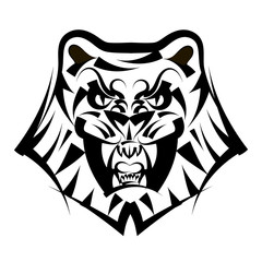 Vector illustration head tiger on a white background