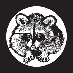 Deurstickers Hand getrokken schets van dieren Raccoon - realistic graphic vector illustration. Black and white portrait in style of engraving, isolated on a white circle, design element for logo or template. Cute animal of North America.