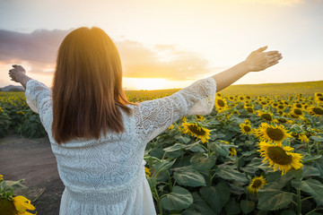 Happy woman in sunflower field. Summer girl in flower field cheerful. Asian Caucasian young woman raise arm and freedom show in evening time and twilight.