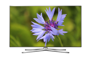 Smart tv with cornflower on screen