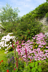 A beautiful summer walled garden border flowerbed