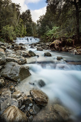Liffey Falls upper cascade, Tasmania, Australia
