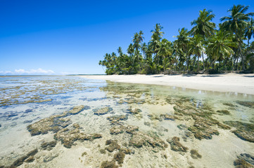 Scenic view of a remote Brazilian beach with coral reef in Bahia, Brazil