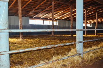 farm for cows