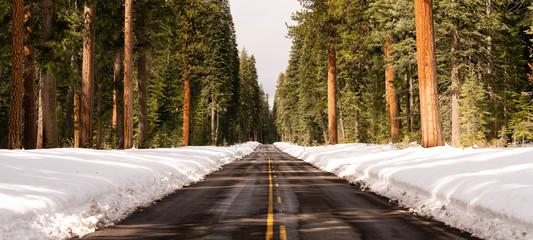 Long Panoramic Composition Open Road Two Lane Highway Winter Season Oregon