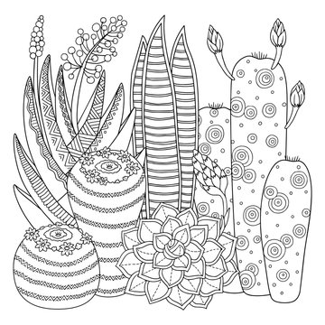 Linear image on white background cute cactus for page for coloring book. Contour image of cactus scribble for coloring for adults.