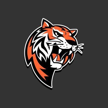Tiger logo sport team vector