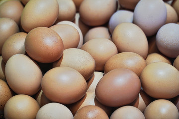 Pile of organic fresh and raw hen chicken eggs for sale at local farmer market.High protein nutrition for healthy.Food,Business,Easter Concept.