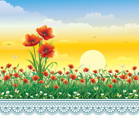 Summer floral landscape against the background of the dawn