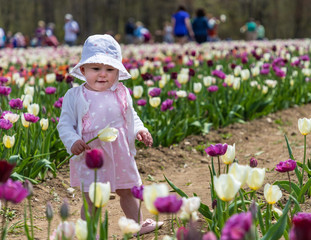 A toddler holding a yellow tulip is looking at a purple flower