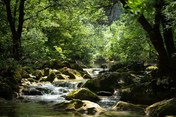 Foto op Aluminium Rivier une petite cascade au milieu d'une végétation luxuriante
