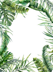 Watercolor tropical frame with exotic leaves. Hand painted floral illustration with banana, coconut and monstera branch isolated on white background for design, fabric or print.