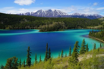 Emerald Lake, Yukon, Canada with mountains and forest on the background