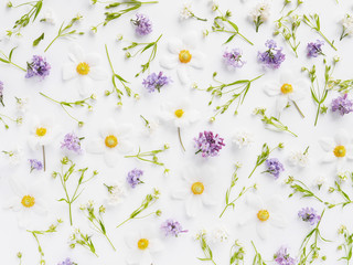 flower pattern background of wildflowers top view, flat lay.
