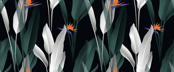 Tropical plant seamless pattern, palm leaves and Bird of paradise flowers on black background