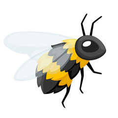 Illustration of bee. Honey flying bee. Cute character design in cartoon style. Vector illustration isolated on white background