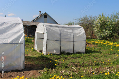 Plastic Greenhouses For Growing Vegetables On The Farm Field