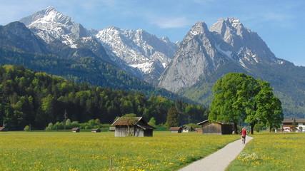 Deutschland, Bayern, Oberbayern, Werdenfelser Land, Garmisch-Partenkirchen, Hammersbacher Fußweg, Zugspitze, Berge, Bäume, Zuspitzgruppe Wall mural