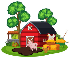 Farm Animal and Barn on White Background