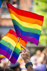 Rainbow flags flying in bright sun on the sidelines of a colorful summer gay pride parade