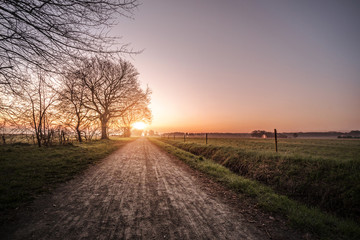 Countryside trail in the morning sunrise with rural fields