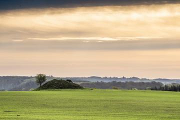 Historic barrow hill on a green field in Denmark