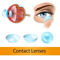 Putting on Contact Lenses Realistic Vector diagram with Human Eye Anatomy Cross Section Illustration, Contact Lens on Finger near Womans Eye and Different Types Eye Lenses Isolated on White Background