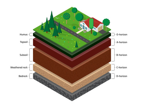 Isometric named layers of soil with a top layer of green grass,  house, forest, garden and road on it. The stratum of organic, minerals, sand, clay.