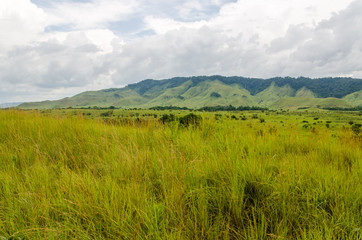 Rolling hills, lush green grass and soft white clouds in countryside of Republic of Congo, Central Africa