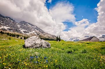 Plateau of Montasio. Mountain range landscape