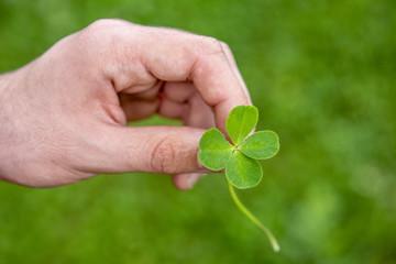 trébol de cuatro hojas, símbolo de buena suerte