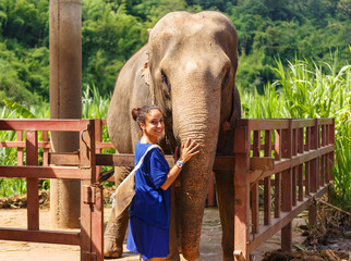 Girl caresss an elephant at sanctuary in Chiang Mai Thailand