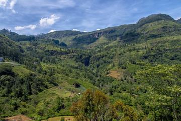 Landscape panorama sri lanka