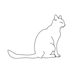 Cat outline on white background