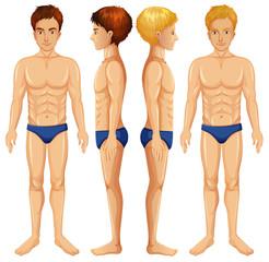 A Set of Male Body