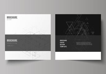The minimal vector editable layout of two square format covers design templates for brochure, flyer, magazine. Polygonal background with triangles, connecting dots and lines. Connection structure.
