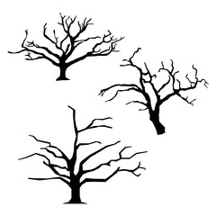 Collection of dead tree silhouettes without leaves