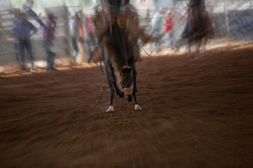 Bucking Horse With Rider At Indoor Country Rodeo