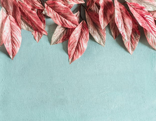 Beautiful pink leaves border on pastel blue background , top view, flat lay. Nature concept