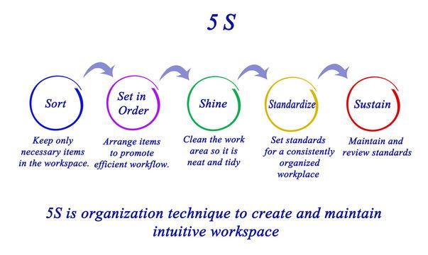 5S organization technique