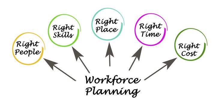 Workforce Planning Targets