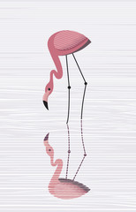 Flamingos are reflected in water