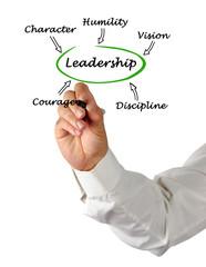 What good Leadership is