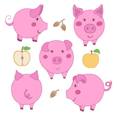 Set of cute cartoon pink pig: face, profile, back view. Sliced and whole apple. Acorn.