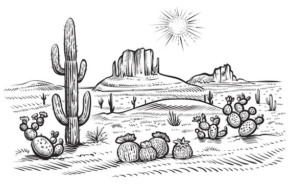 Desert landscape vector illustration with saguaro and opuntia blooming cactus.