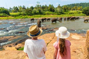 Kids watching elephants