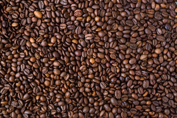 Large brown coffee beans, food background of the coffee beans.