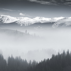 BW landscape with fog