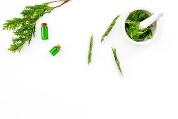 Harvest juniper as medical herbs. Make juniper oil. Juniper sprigs in mortar on white background top view copy space