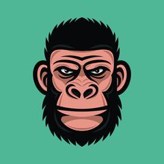 Head monkey illustration